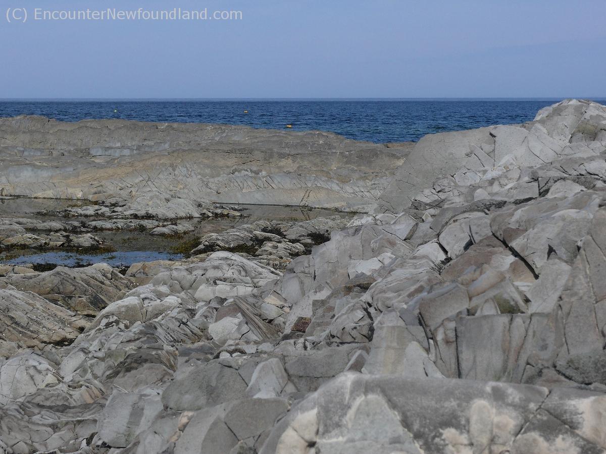 Buoys off the rocky coast of NL
