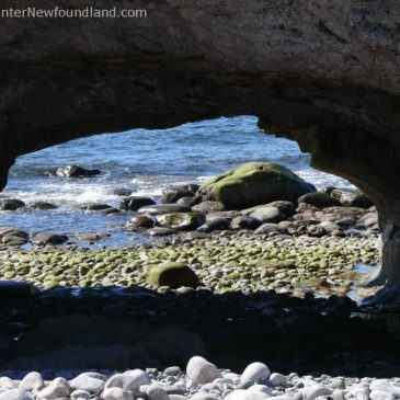 These Rugged Shores: Photos of Western Newfoundland's Rocky Coastline