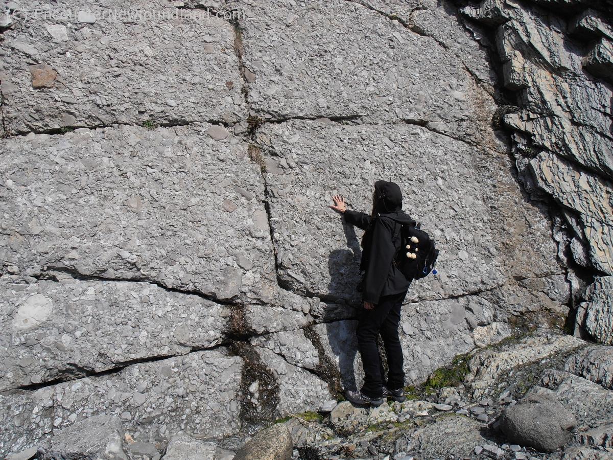Natural limestone walls