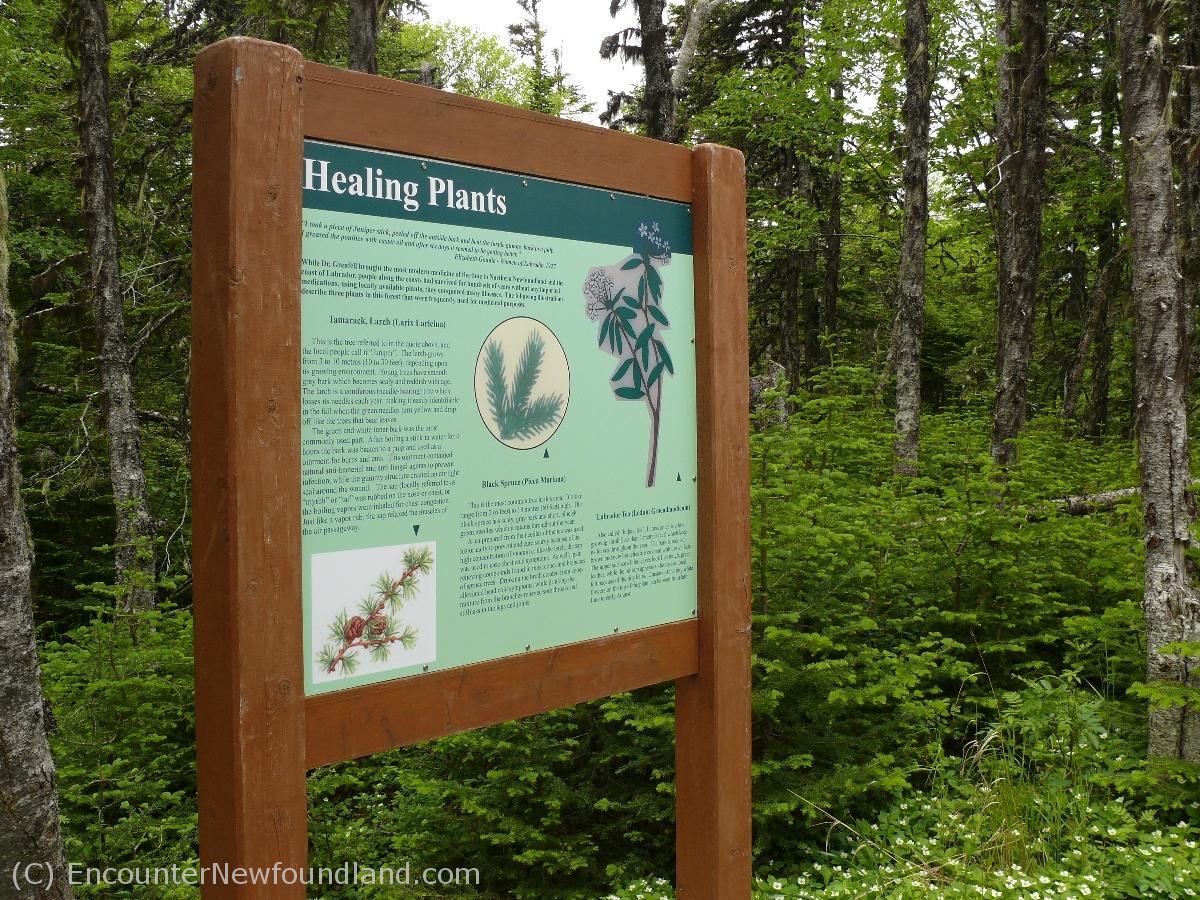 Signage on Tea Hill Trail