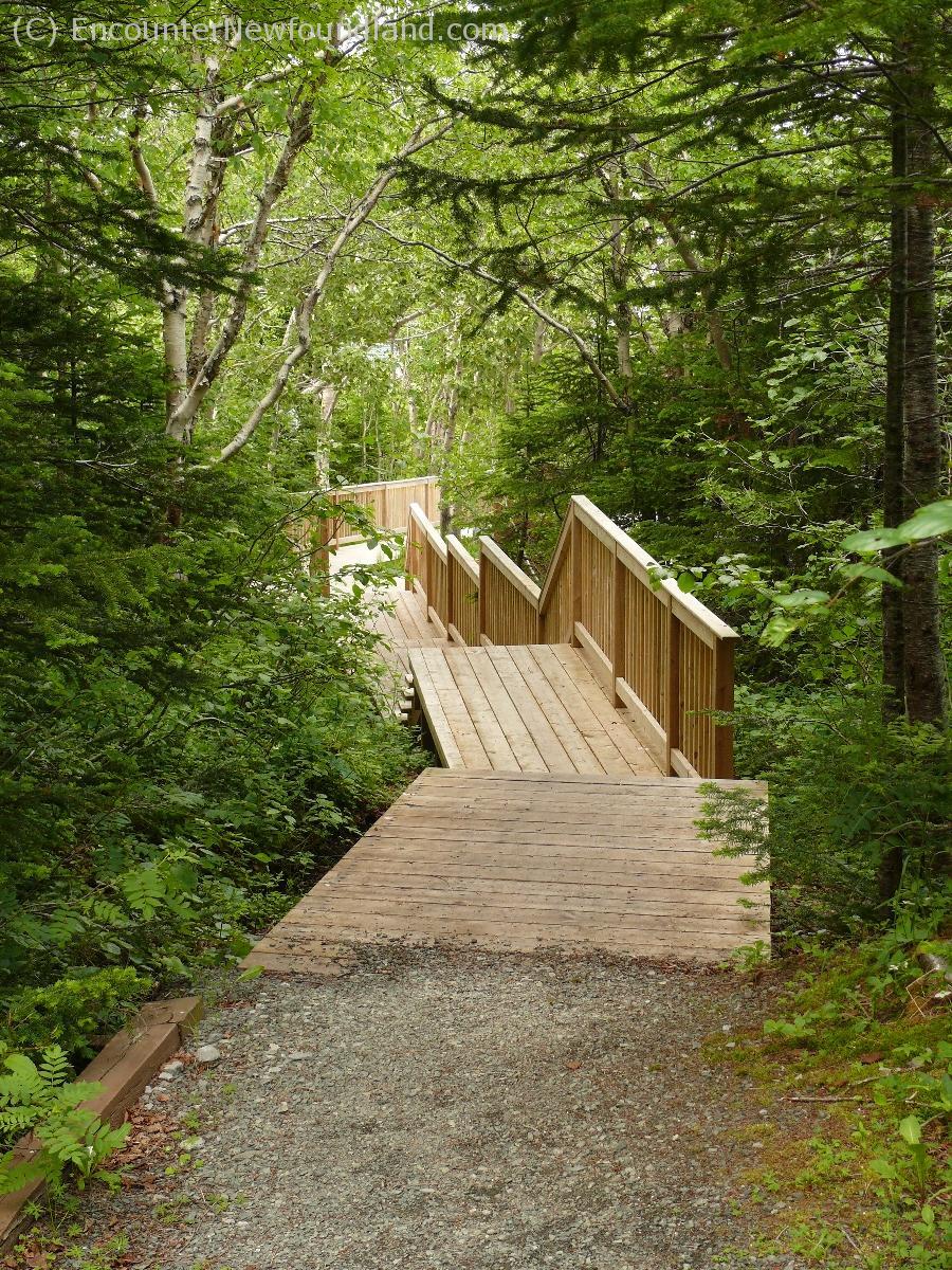 Tea Hill Trail
