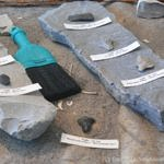 The Bird Cove - Plum Point Project has  yielded a significant quantity of ancient artifacts