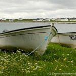 Fishing boats hauled ashore at Savage Cove, NL