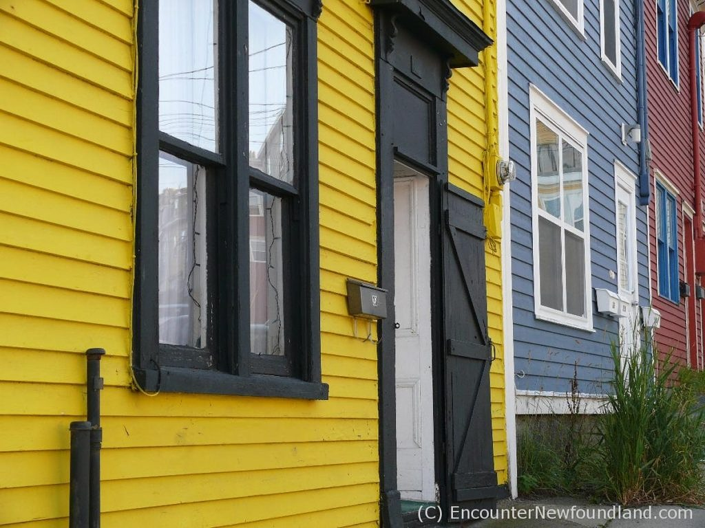 Brightly painted row houses