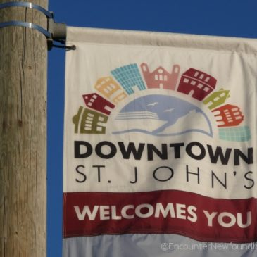 6 Things that Set the City of St. John's Apart