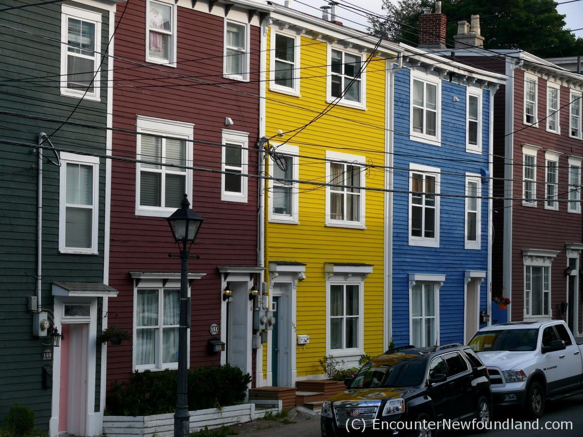 Jellybean row the color of st john s encounter for Newfoundland houses