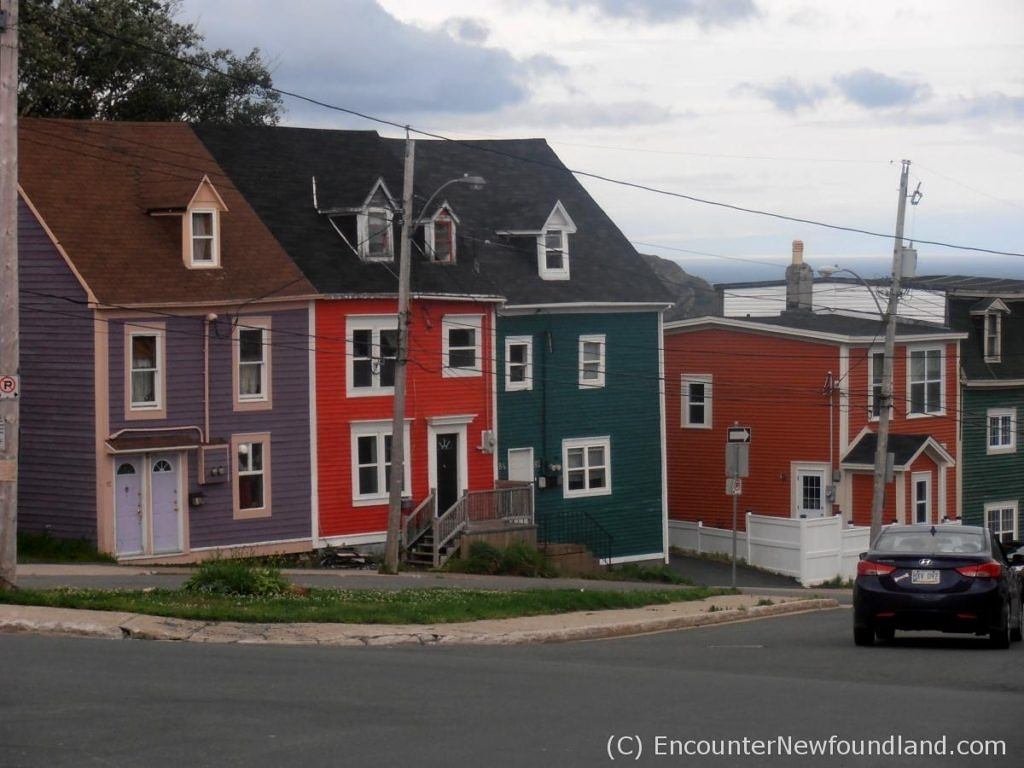 vibrantly painted row houses